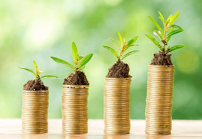 Monedas apiladas con plantas